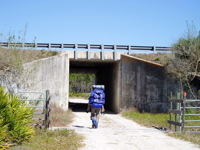 Passing under Florida's Turnpike in Three Lakes WMA (Deb Blick)